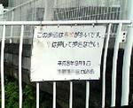 20080709.jpg