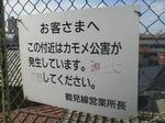 20110917f.JPG