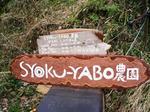 SYOKU-YABO