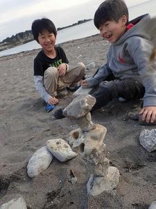 TIDEPOOL「かたち」 海で見つけるかたち