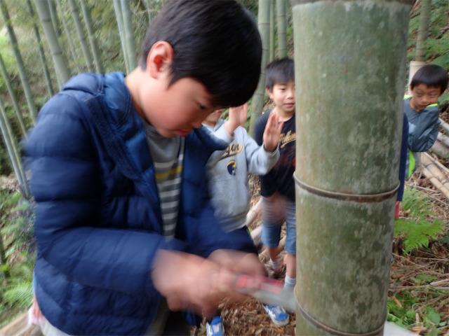 TIDEPOOL 月曜日かたち 「竹に触れる」