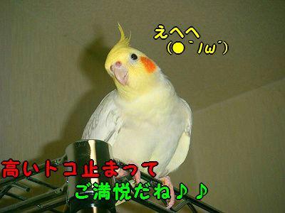013_400.jpg