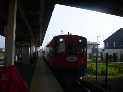 P1140464_500.JPG