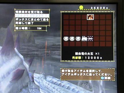 DSC06231.JPG