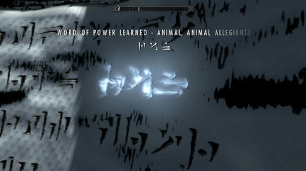 2011-11-29_00016.jpg