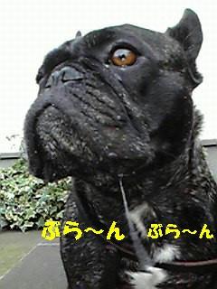 200812111022002.jpg