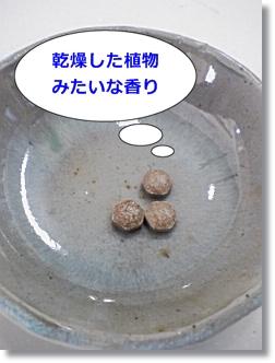 マカEX錠剤
