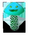 mushroom02.png