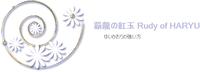 覇龍の紅玉(ポケモンwiki)