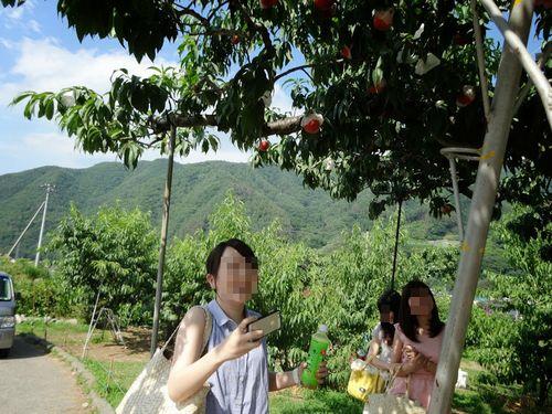 山梨一宮御坂桃狩りおすすめ有名農園農場安い時間制限ない食べ放題ができる