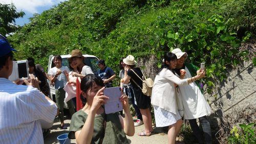 山梨夏の観光スポット桃狩り農園食べ放題SNS映えするフェイスブックインスタツイッター投稿にオススメ