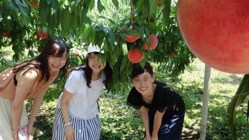 SNS映えするインスタツイッターフェイスブック投稿にオススメ山梨夏の観光スポット桃狩り農園食べ放題