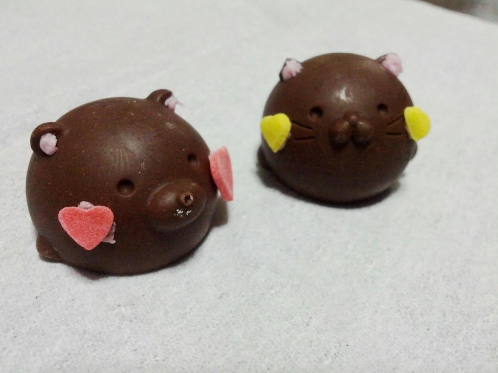 豚なのか猫なのか