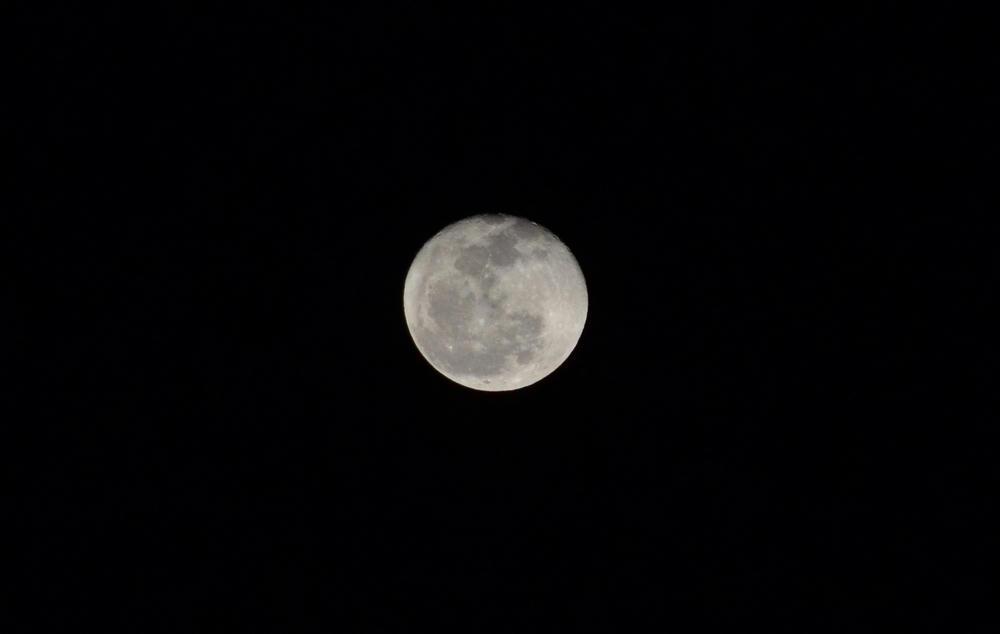 月が綺麗すぎるので、つい