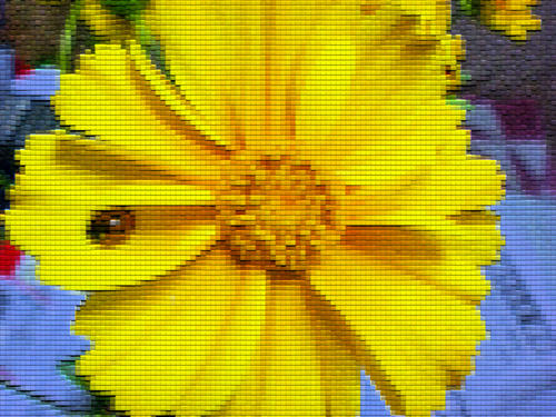 f2634a9b.jpg