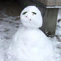 雪…だるま…?