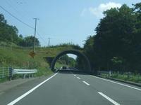 しかトンネル