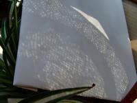 日食 麦わら帽子投影