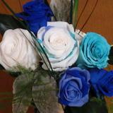 夏の色・ブルーの登場!:ブログで全体を見ていただける方はクリックしてくださ~い!