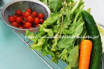 新鮮野菜でぬか漬け