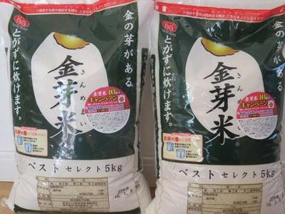 金芽米リピします!栄養価が高くおいしい精米方法