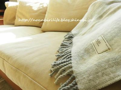 電気毛布っていいね♪便利で暖かくて電気代も安い!