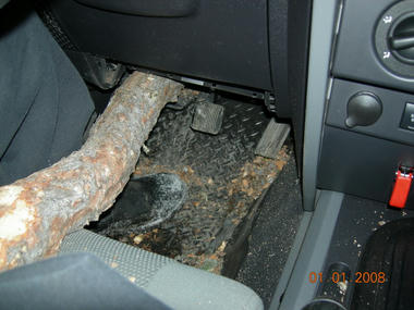 jeep_tree2.jpg