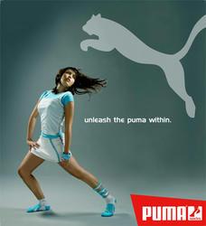 Puma-Awe.jpg