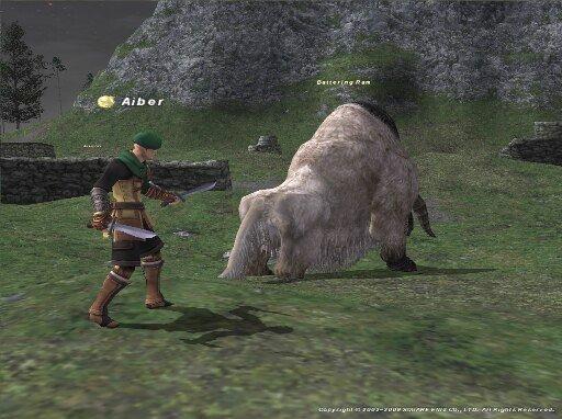 雄羊が3匹