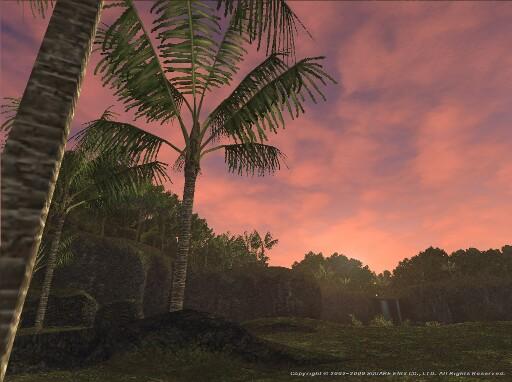 ジャングルに夜が来る