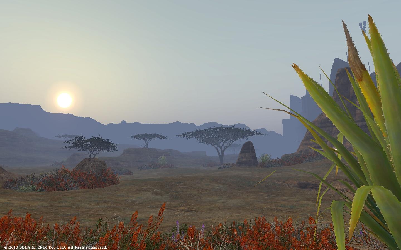 丘陵に昇る陽