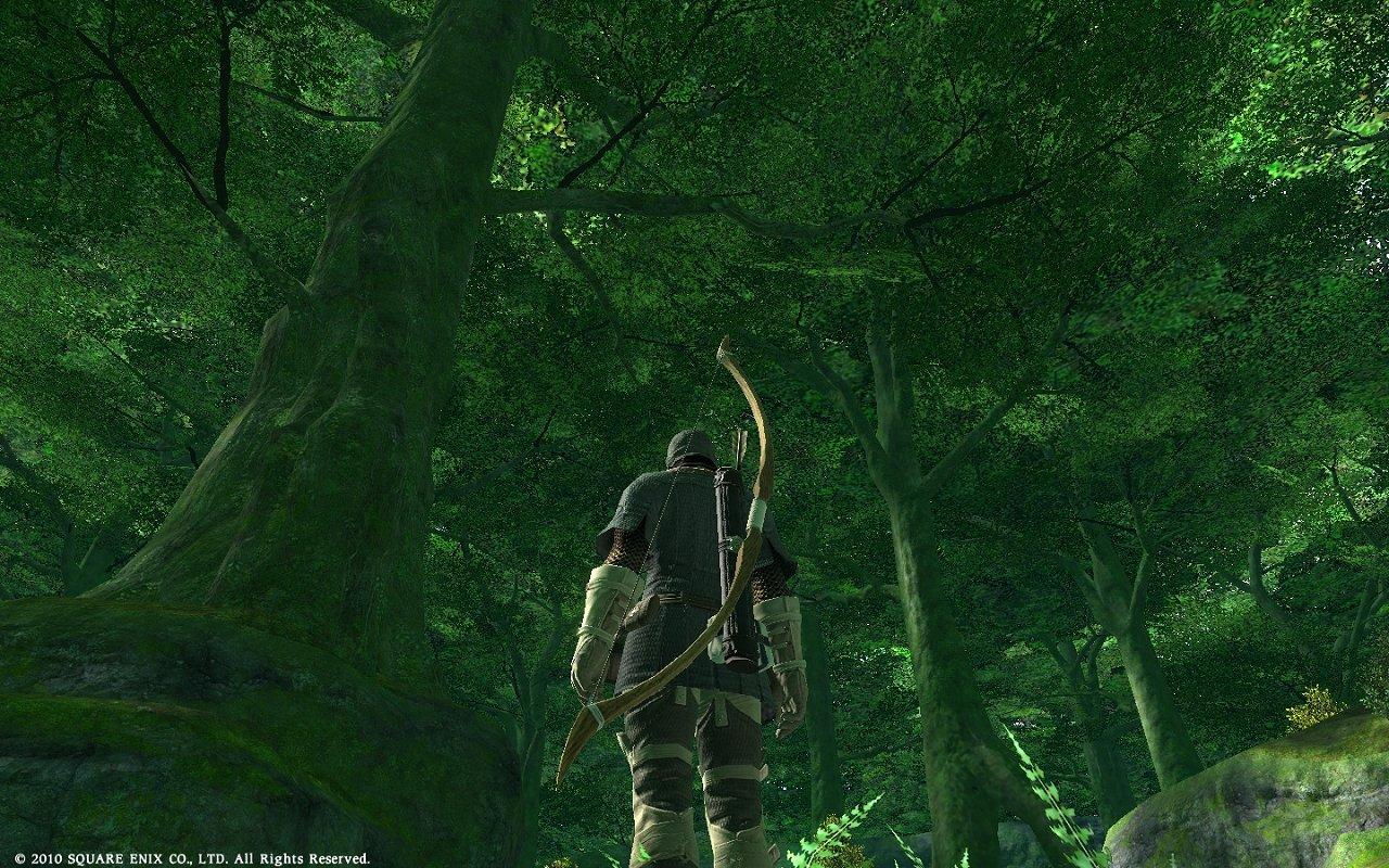 緑の森の中