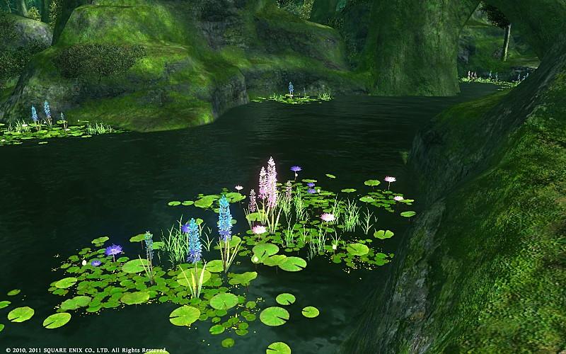 湖面に浮かぶ緑