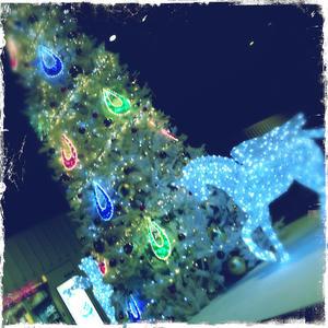 成田空港クリスマス