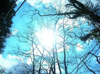 微妙に良い感じに撮れたつもりの太陽