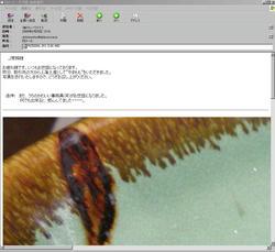 PRI_2.jpg