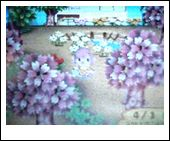 20060401111431.jpg