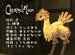 CaramelMoon