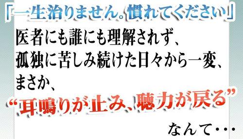 20101029161815.jpg