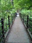 写真:高尾山「つり橋」