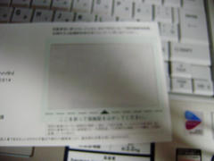 P3140045.JPG