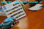DSC_8143.jpg