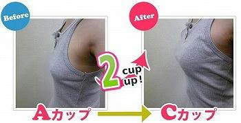 a-capture10.jpg