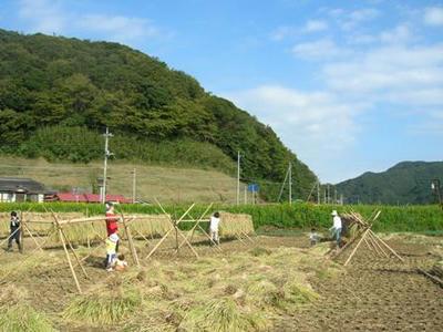 去年の稲刈りの時に援農に来てくれた皆さん