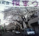 201004011737000sakura.jpg