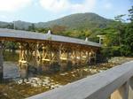 伊勢神宮の新しい橋