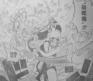 ニコロビン 千紫万紅(ミル・フルール) 胡蝶蘭