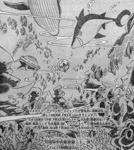 ジンベイの海峡一人旅Vol.1「仲間の元へ」