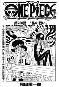 ONE PIECE 第788話 私の戦い レビュー