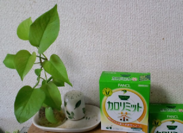 KIREI_CA3C1011.JPG